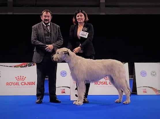 EURO DOG SHOW WARSZAWA